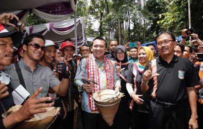 Ridho Bersama Ribuan Petani Ngunduh Damar