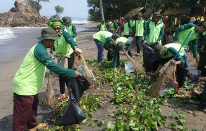 Dispar Bersihkan Sampah Pantai Karang Bolong Tanggamus