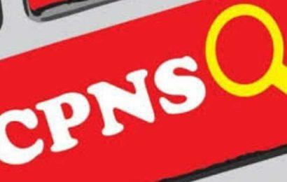 Pesibar Bentuk Panitia Penerimaan 500 CPNSD